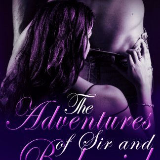 The Adventures of Sir and Babygirl by Kayla Lords, Book 1